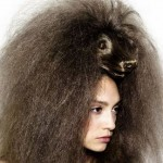 weird animal hairstyles 13 150x150 Weird Hair for Art