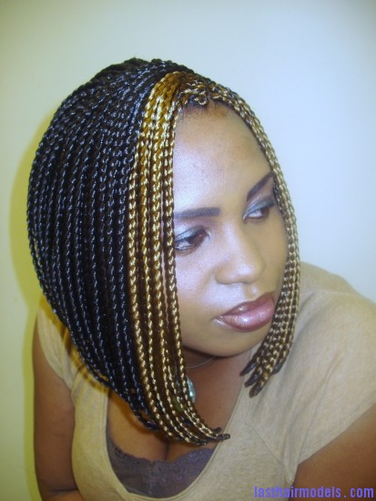 salon1foto 010 Multiple hair plaits and braids hairstyle.