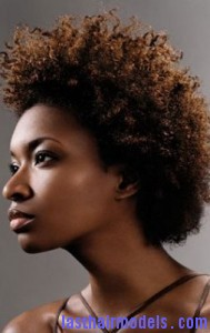 afro mohawk4 189x300 Afro Mohawk Hairstyle