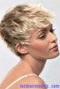 crop short hair8 201x300 Crop Short Hairstyle