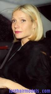 gwyneth paltrow2