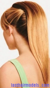 waterfall ponytail8