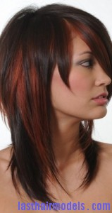 hair highlights5