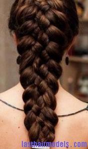 five-strand braid2