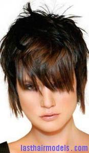 panel haircut