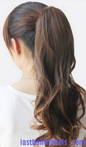fake ponytail2