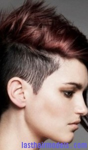 hair follicle3