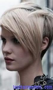 hair follicle4