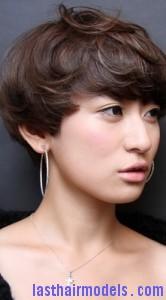 hair follicle7