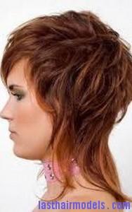 long shag haircut6