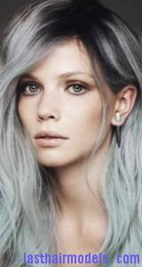 silvery gray hair