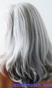 silvery gray hair2