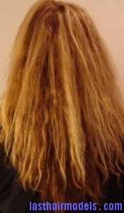 porous hair2