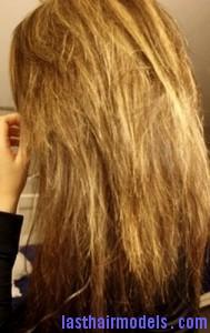 dead hair2