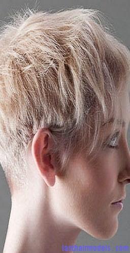 clipper-over-comb3